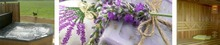 Wellness Vakantiewoning Lavendel bij Weidebosch
